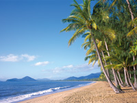 Palm Cove Is The Northernmost Beach In A Trilogy Of Cairns Beaches Including Trinity Kewarra And Clifton
