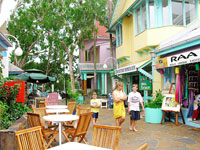 Palm Cove Shops