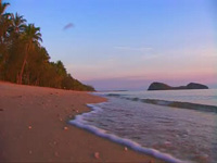 Palm Cove - Clean Beach