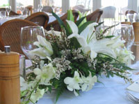 Palm Cove Weddings — Flowers